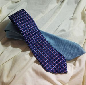 Set of 2 Vintage Blue Men's Neckties